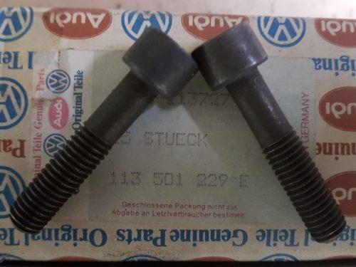 113501229E Cheese head bolt