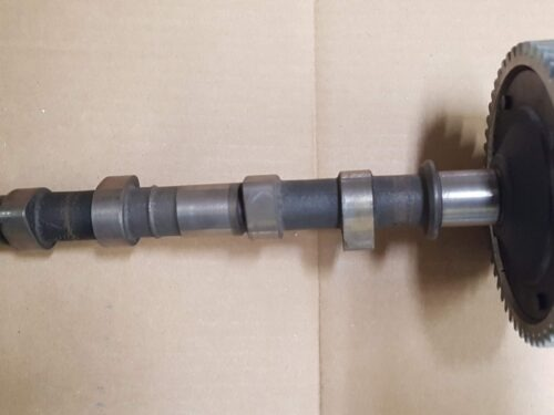 025109021BCamshaft with gear
